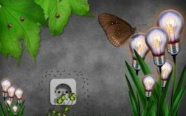 Eco Home Adaptations